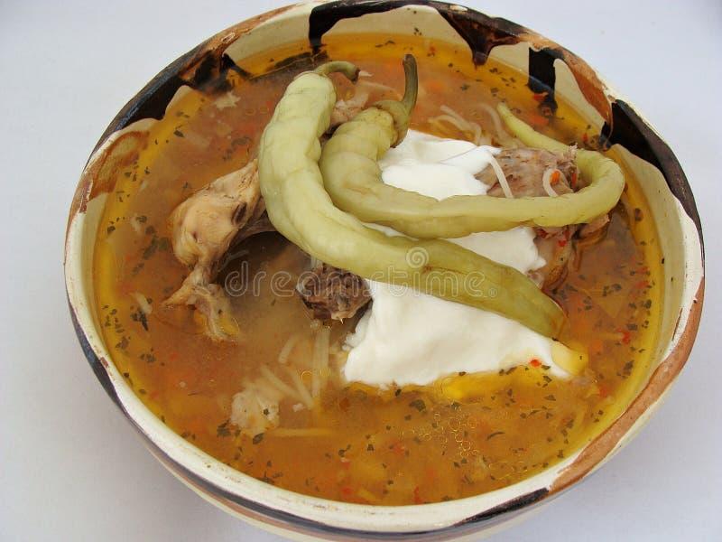 Sopa amarga del pollo rumano fotos de archivo libres de regalías