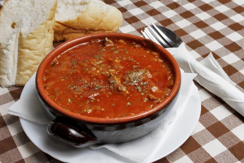 Sopa balcánica tradicional con pan imágenes de archivo libres de regalías
