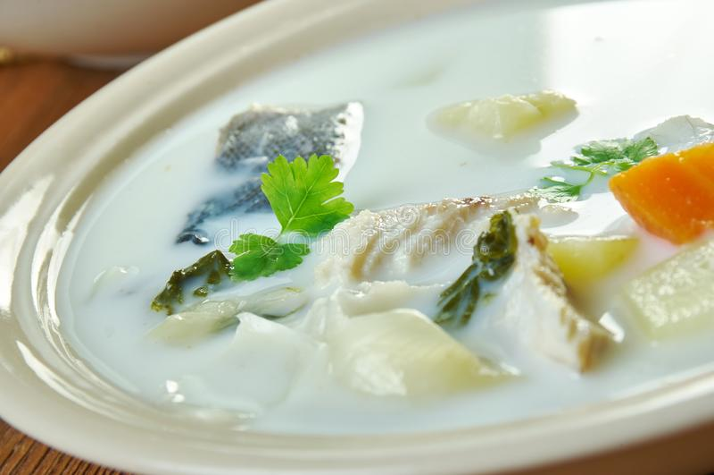 Sopa belga dos peixes fotos de stock