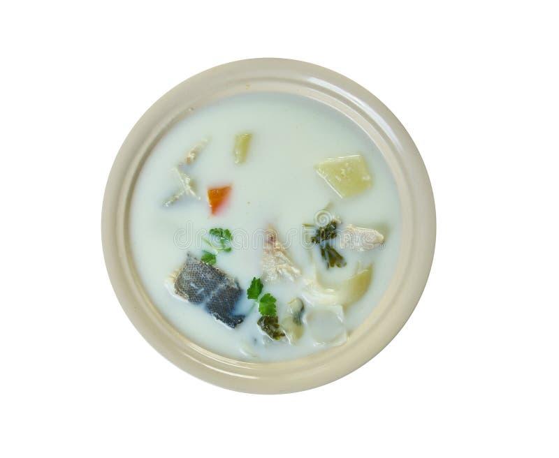 Sopa belga dos peixes fotos de stock royalty free