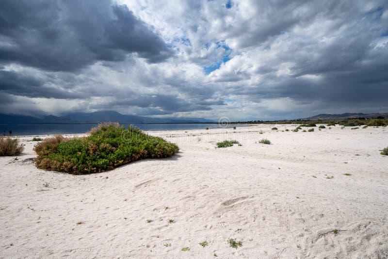 Sopa bred vinkelsikt av den förfalla stranden pÃ¥ det Salton havet i Kalifornien, som stormmoln rullar in fotografering för bildbyråer