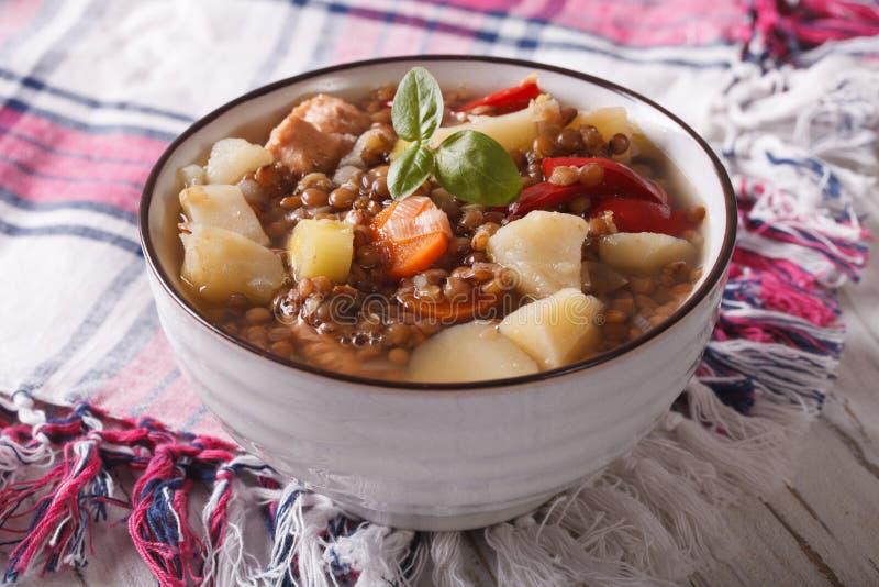 Sopa caseiro de lentilhas marrons com galinha e vegetais fotos de stock royalty free