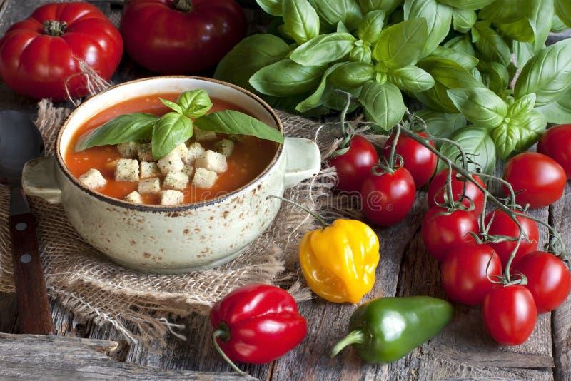 Sopa caseiro do tomate com tomates, ervas e especiarias fotografia de stock