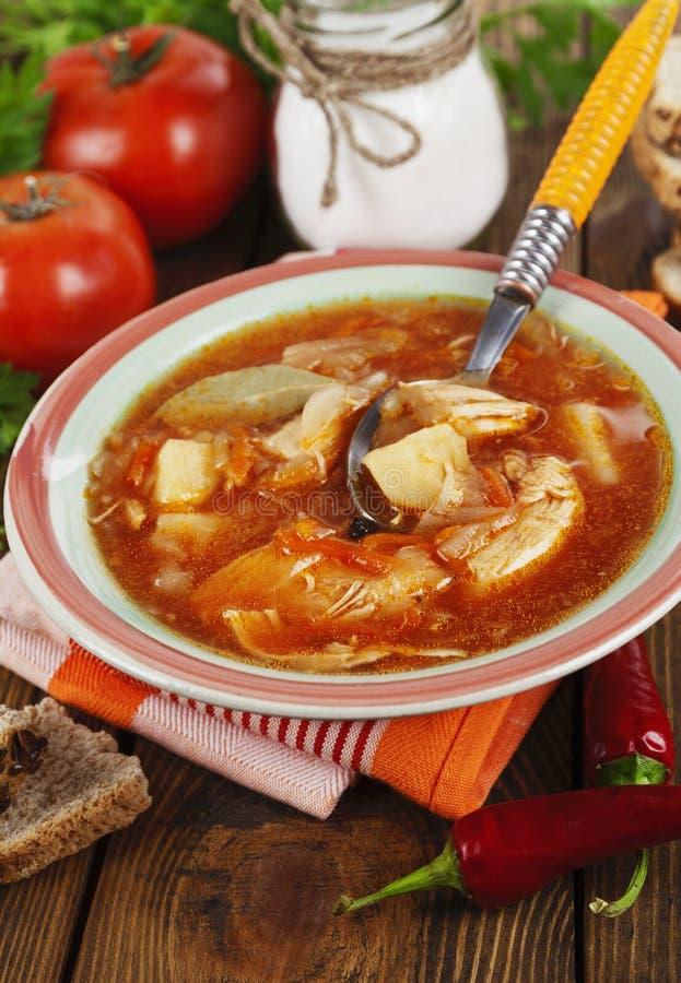Download Sopa com couve e carne foto de stock. Imagem de carne - 65579660