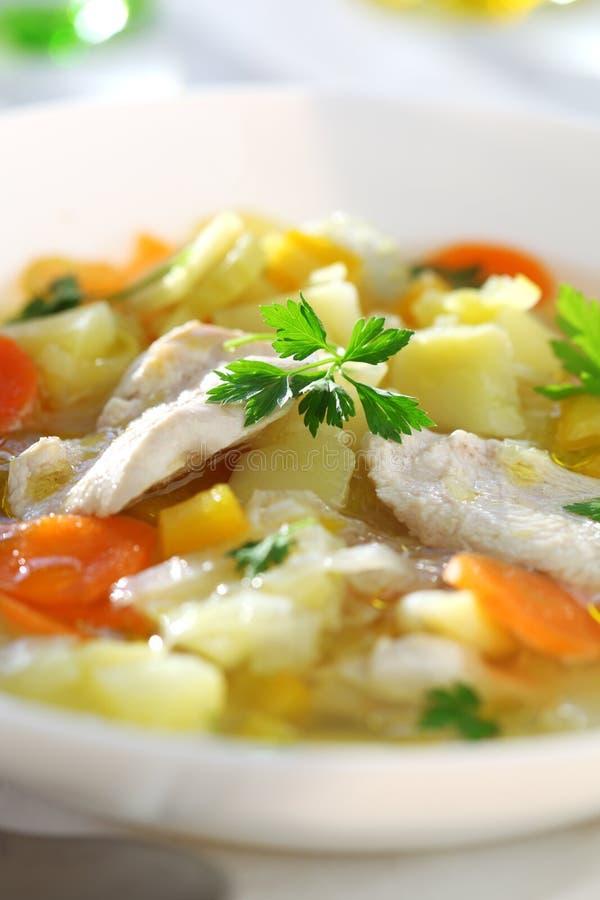 Sopa com galinha fotografia de stock