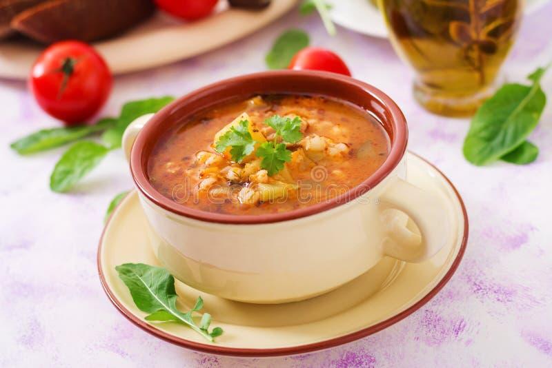 Sopa com pepinos e cevada de pérola conservados - rassolnik imagem de stock royalty free
