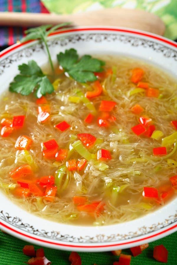 Sopa com sauerkraut fotos de stock royalty free