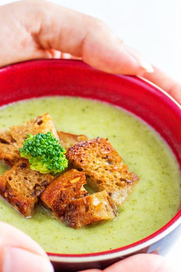 Sopa cremosa del bróculi y del apio fotos de archivo