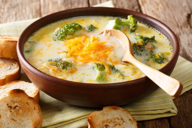 Sopa cremosa grossa picante do queijo dos brócolis em uma bacia com clo do brinde foto de stock