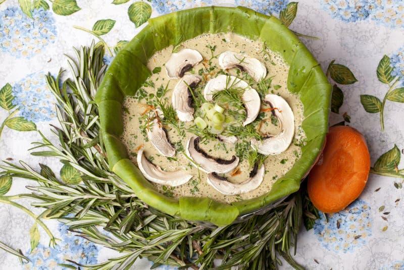 Sopa cruda de la comida con las setas en la placa orgánica de Souchon foto de archivo libre de regalías