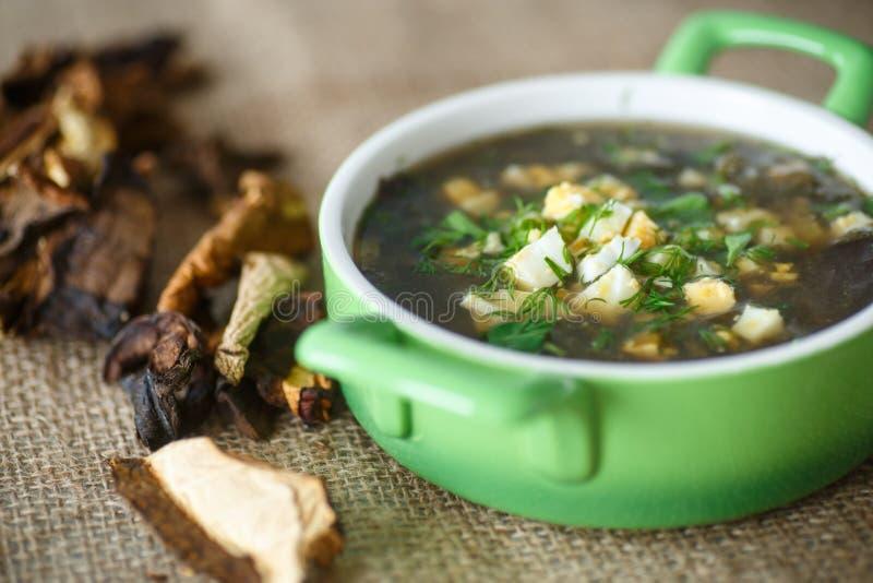 Sopa da azeda com cogumelos secados fotografia de stock