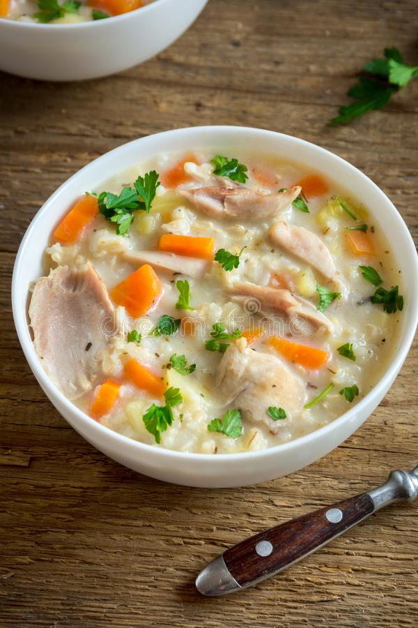 Sopa da galinha e do arroz selvagem imagem de stock