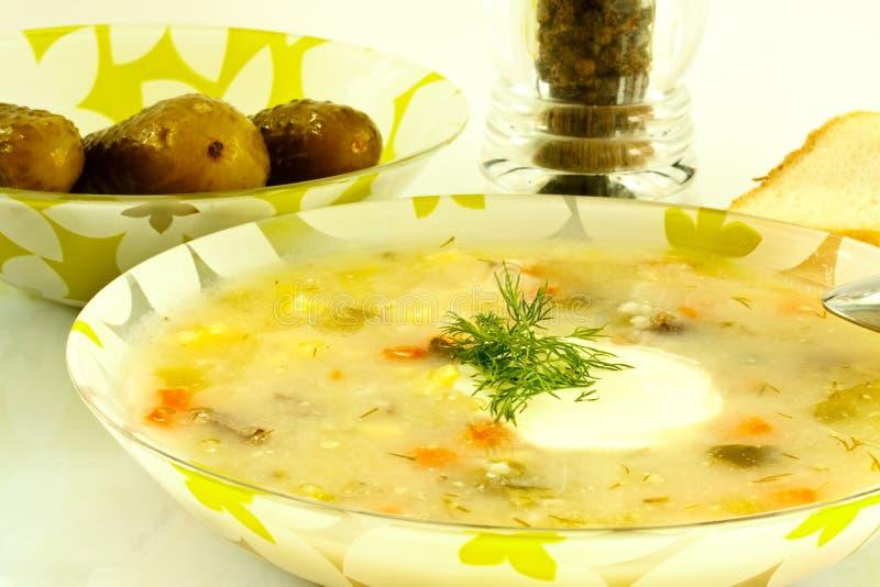 Download Sopa da salmoura imagem de stock. Imagem de cuisine, jantar - 16852565