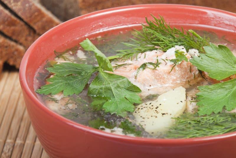 Download Sopa da truta imagem de stock. Imagem de delicioso, seafood - 16852515