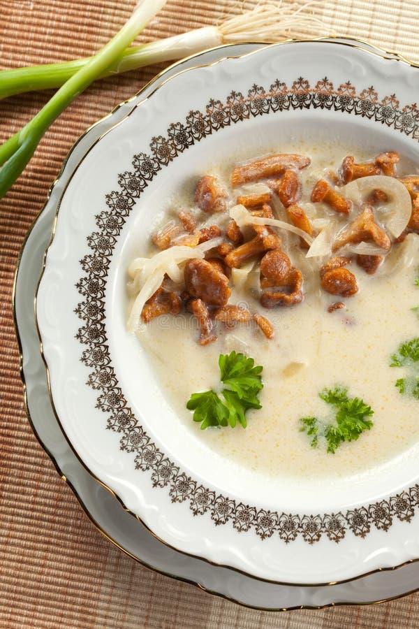 Sopa de Chantarelle con las cebollas imagenes de archivo