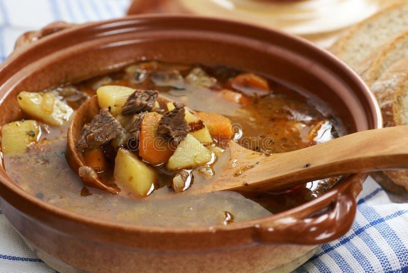 Sopa de cocido húngaro fotos de archivo
