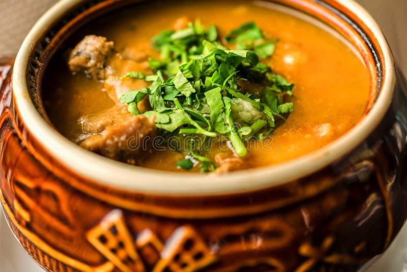 Sopa de cocido húngaro hecha en casa deliciosa con la carne y el par cortado en trozos pequeños imagen de archivo libre de regalías