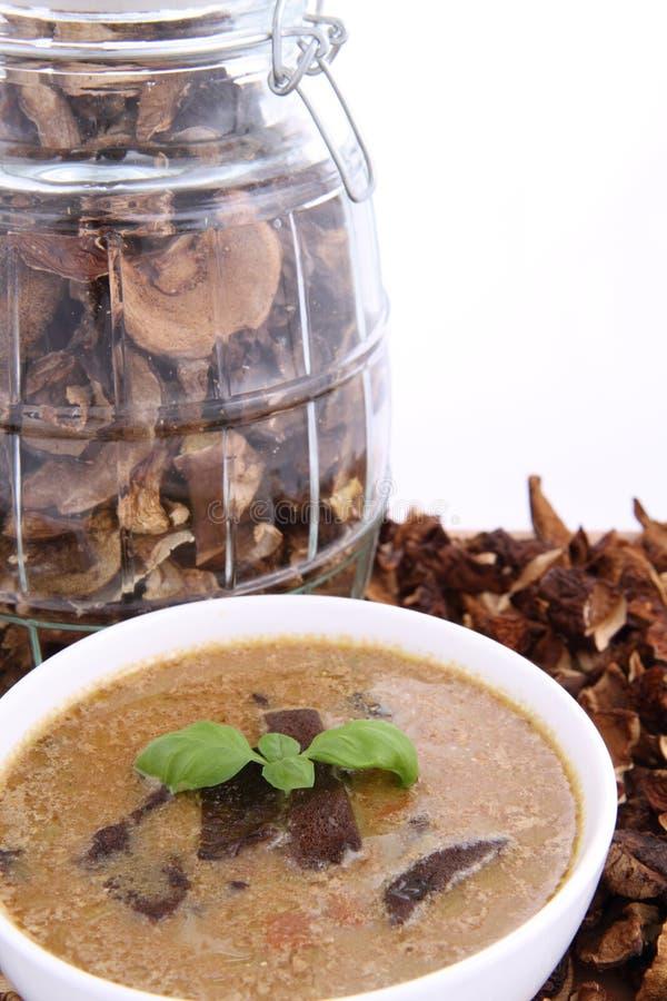 Sopa de cogumelo e cogumelos secados imagens de stock