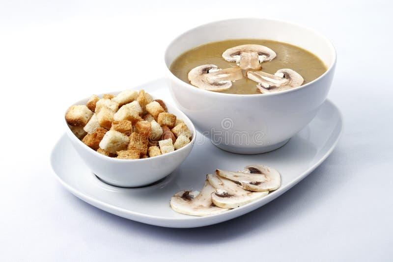 Sopa de creme com cogumelos foto de stock
