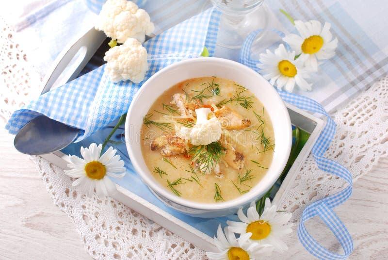 Sopa de creme da couve-flor com galinha e queijo parmesão imagem de stock royalty free