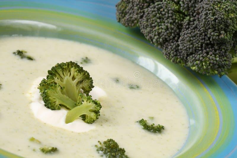 Sopa de creme dos bróculos fotos de stock royalty free