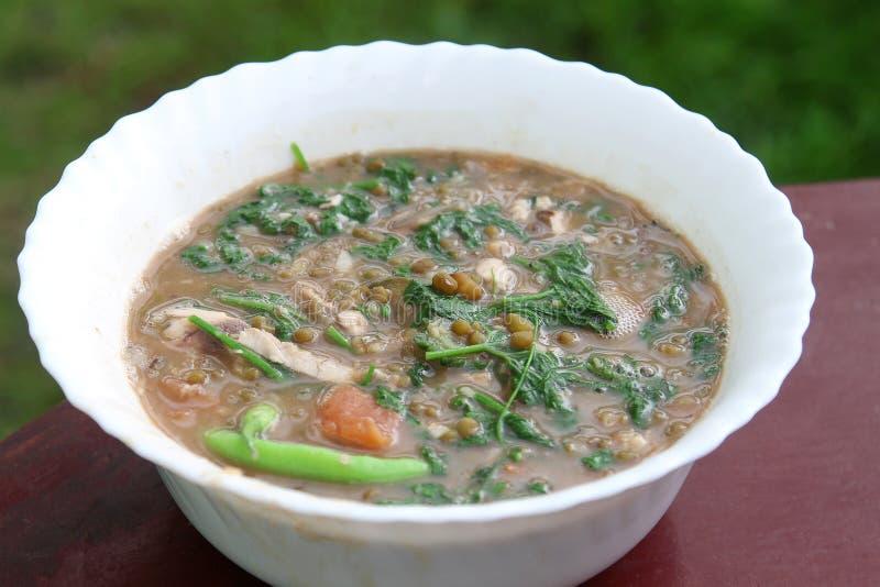 Sopa de feijões verdes do Mongo com o legume com folhas do bittergourd foto de stock