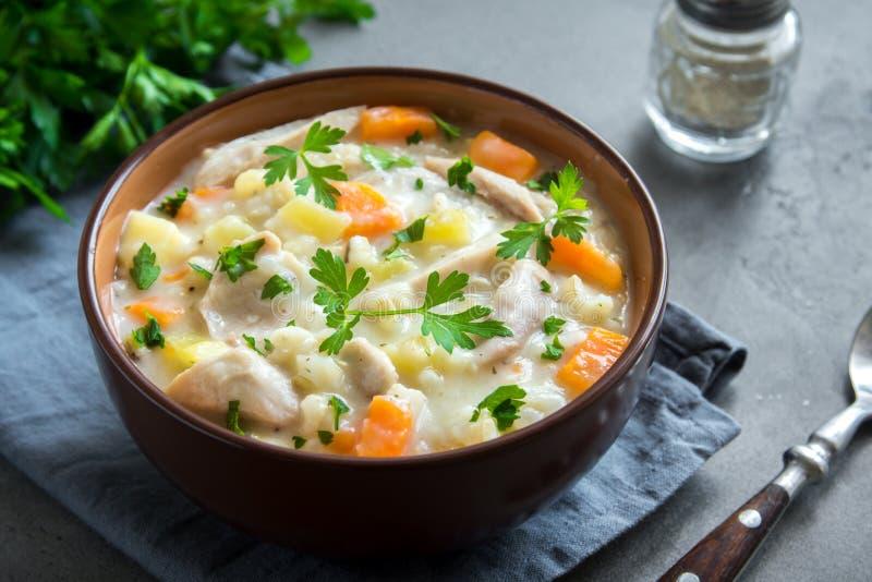 Sopa de galinha imagem de stock