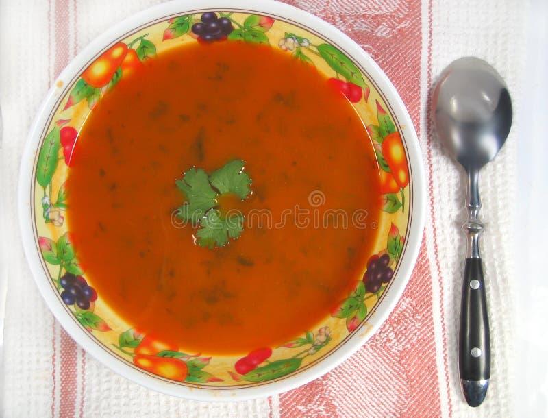 Sopa de la zanahoria imagen de archivo