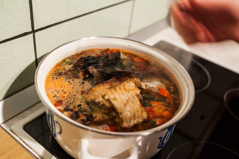 Sopa de los pescados imagen de archivo