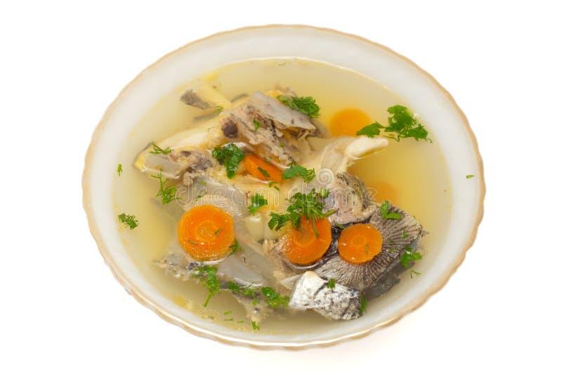 Sopa de los pescados con el esturión fotografía de archivo libre de regalías