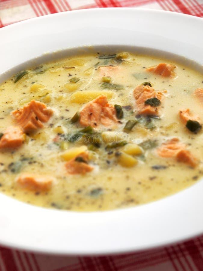Sopa de los pescados con los salmones fotografía de archivo