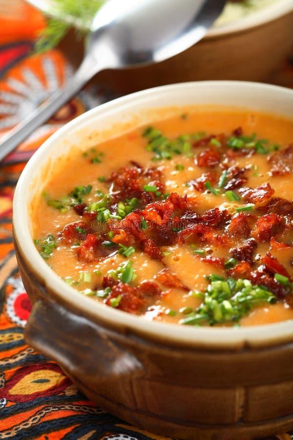 Sopa de los tomates imagen de archivo libre de regalías