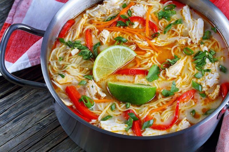 Sopa de macarronete tailandesa do caril do verde da galinha fotos de stock royalty free