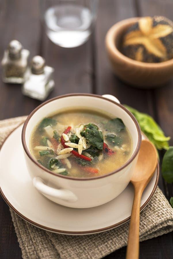 Sopa de Orzo com vegetais foto de stock royalty free