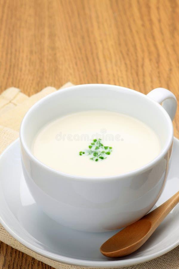 Sopa de Potage fotos de archivo libres de regalías