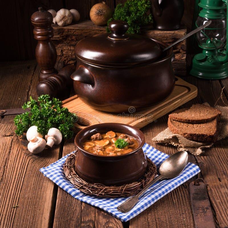 Sopa de tartaruga trocista alemão do norte verdadeiro com cogumelos imagem de stock royalty free