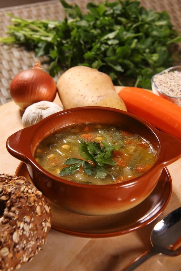 Sopa de vegetais clara fotos de stock royalty free