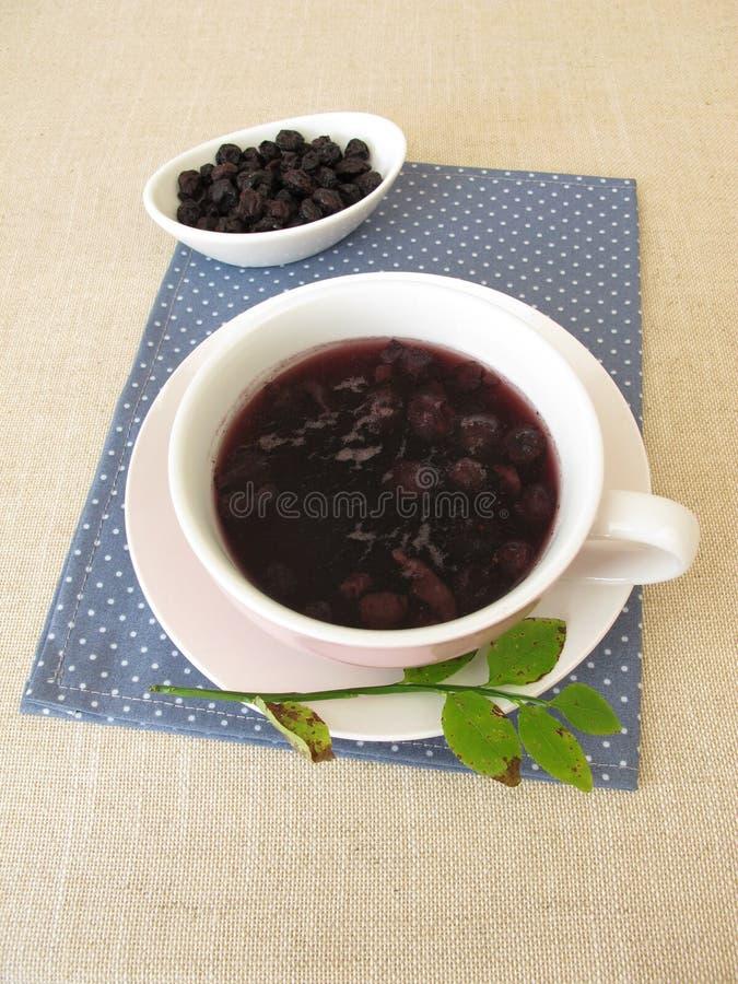 Sopa del arándano de los arándanos secados foto de archivo