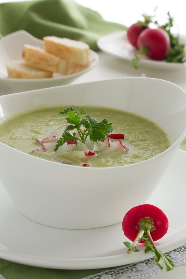 Sopa del bróculi fotografía de archivo