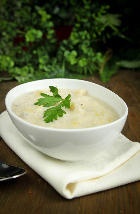 Sopa del puerro y de patata imágenes de archivo libres de regalías