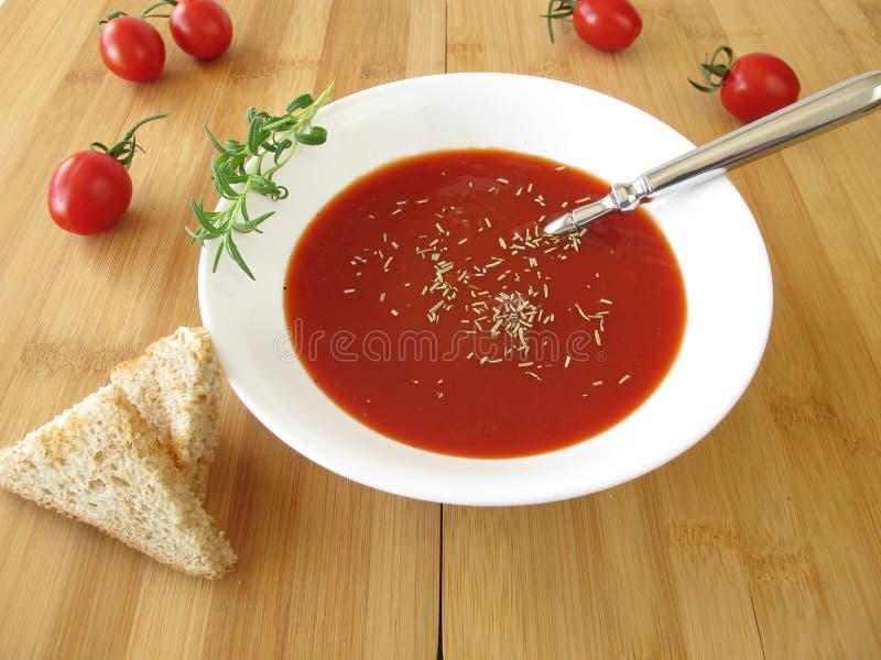 Sopa del tomate con romero fotografía de archivo