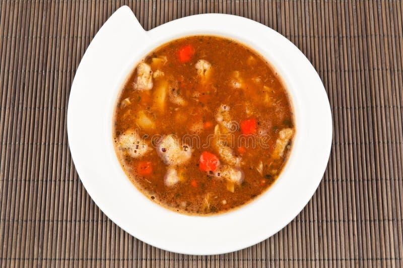 Sopa deliciosa imagens de stock