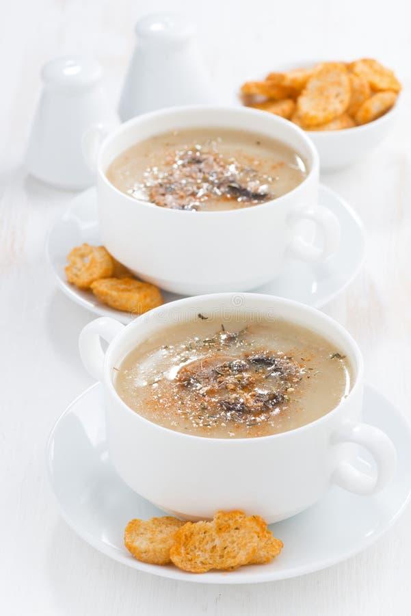 Sopa deliciosa de la crema de la seta con los cuscurrones, verticales imagen de archivo