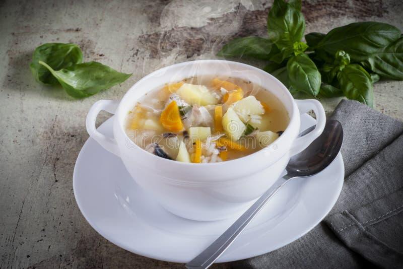 Sopa deliciosa dos peixes em uma placa branca com um guardanapo de linho em um fundo cinzento bonito foto de stock