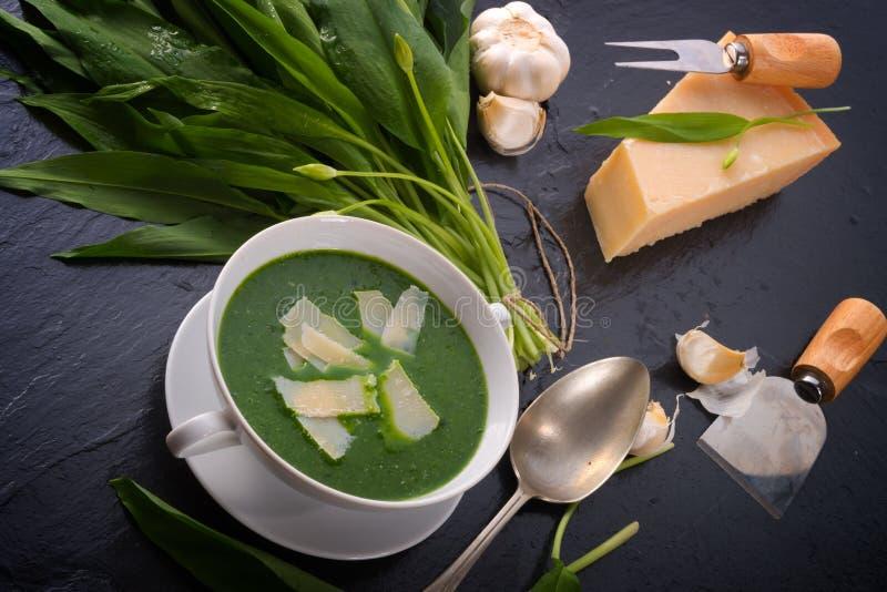 Sopa do alho selvagem com Parmesão foto de stock royalty free