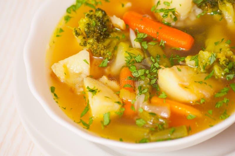Sopa do legume fresco imagem de stock