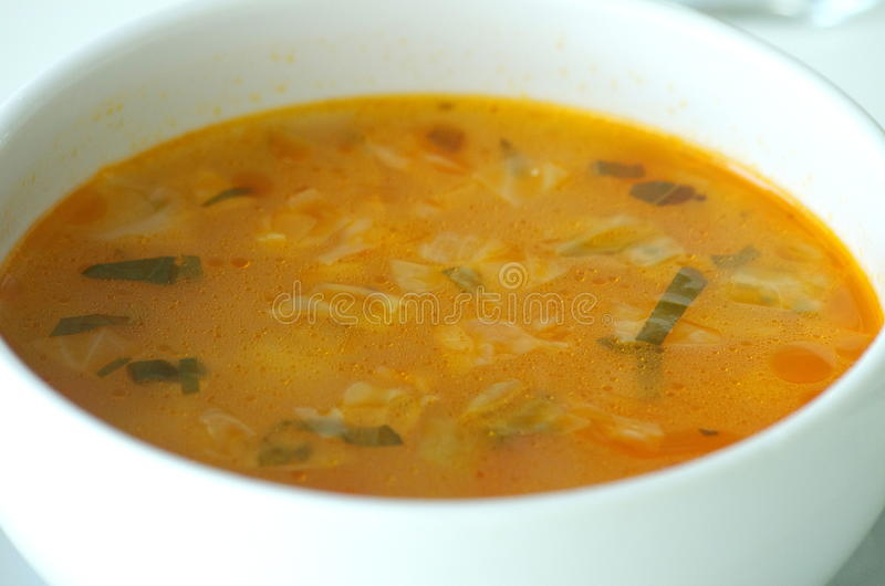 Sopa do legume fresco fotos de stock