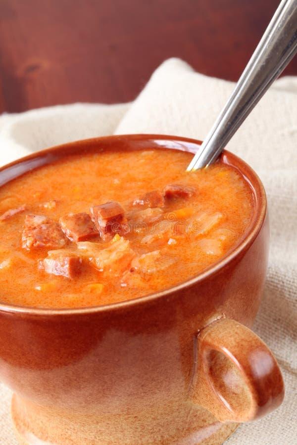 Sopa do repolho e da pimenta vermelha fotos de stock