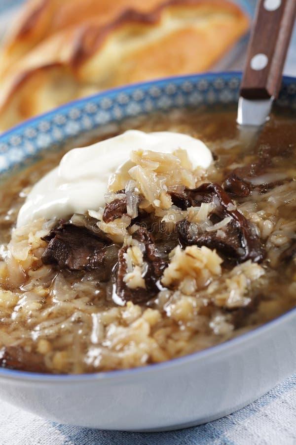Sopa do sauerkraut do russo fotografia de stock
