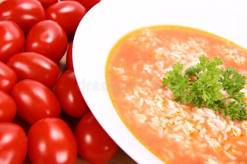 Sopa do tomate com arroz fotografia de stock royalty free